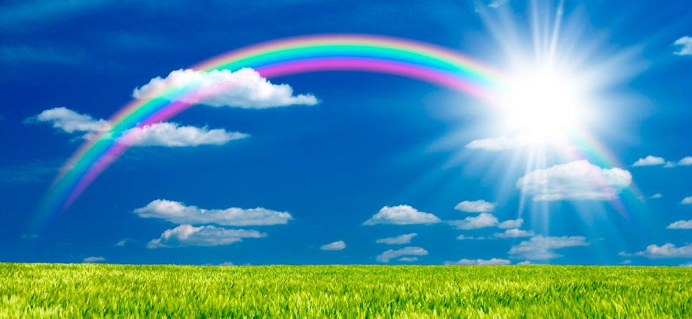 Website rainbow banner